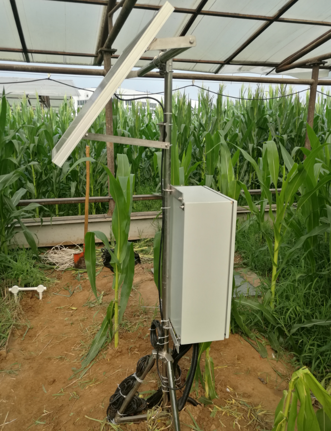 大田精准节水灌溉实验系统完成部署